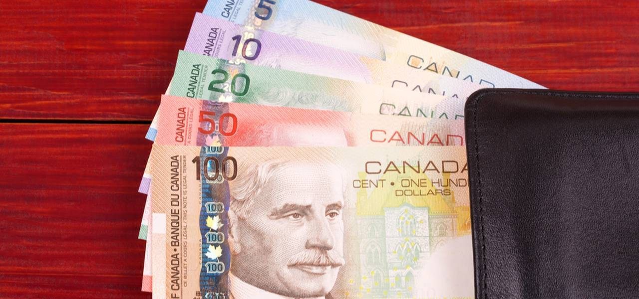Canadian dollar goes down as Bank of Canada leaves rates on hold